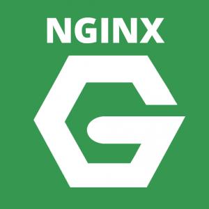 nginx-logo-square